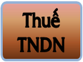 pic_thue_TNDN